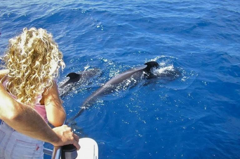 Ekskursija pas delfinus