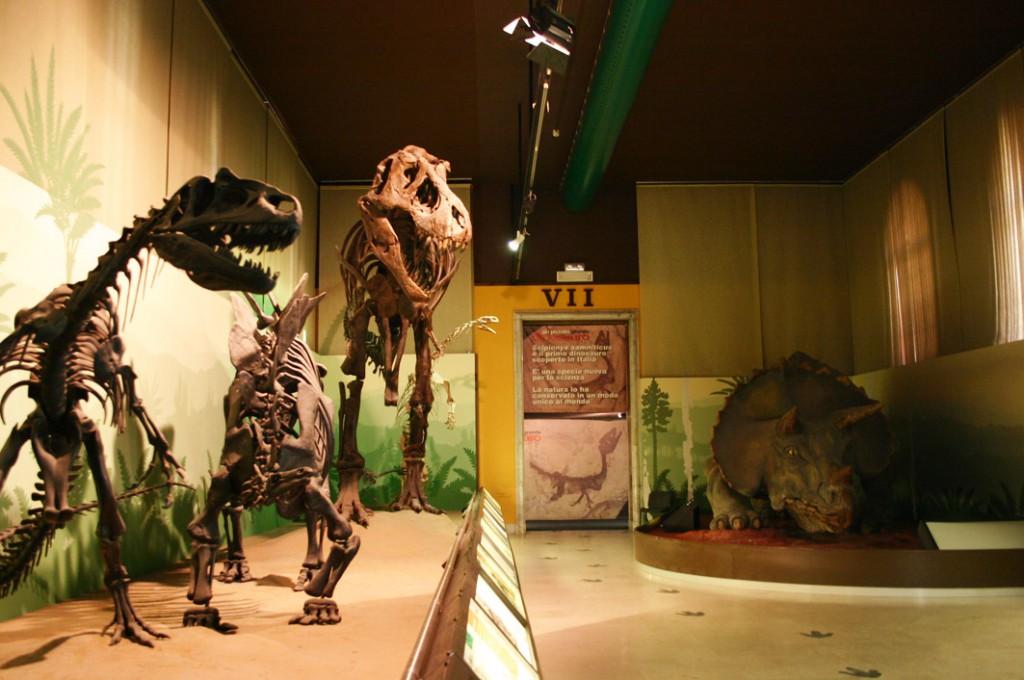 Ką aplankyti Milane. Gamtos muziejus